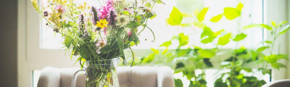 Cum sa mentii un aer curat in locuinta ta