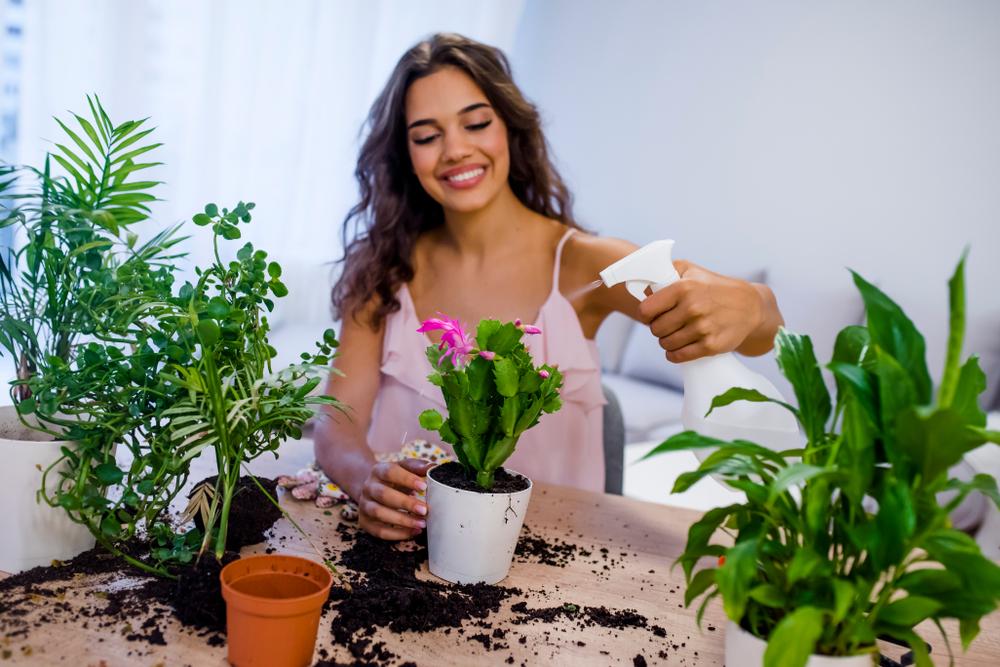 plante rezistente_1