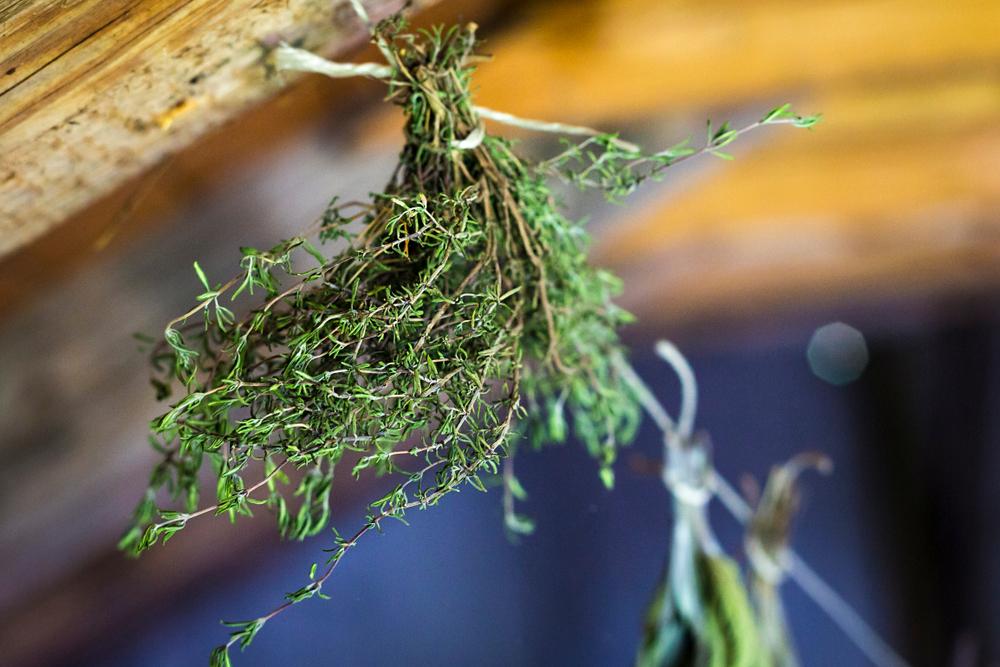 cum-usuci-verdeturile-plantele-aromatice_2