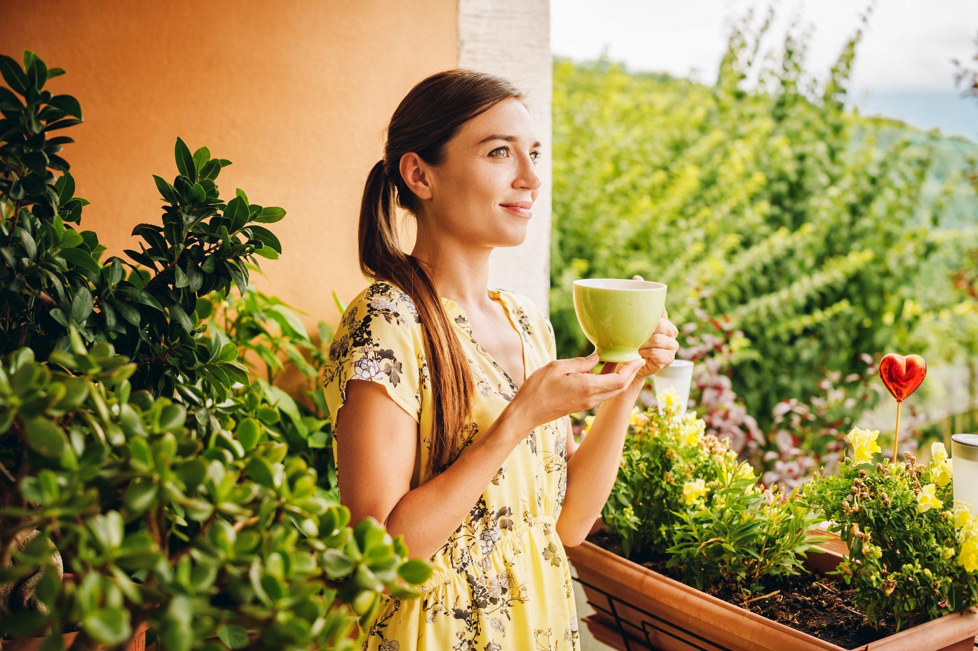 tipuri ceai verde