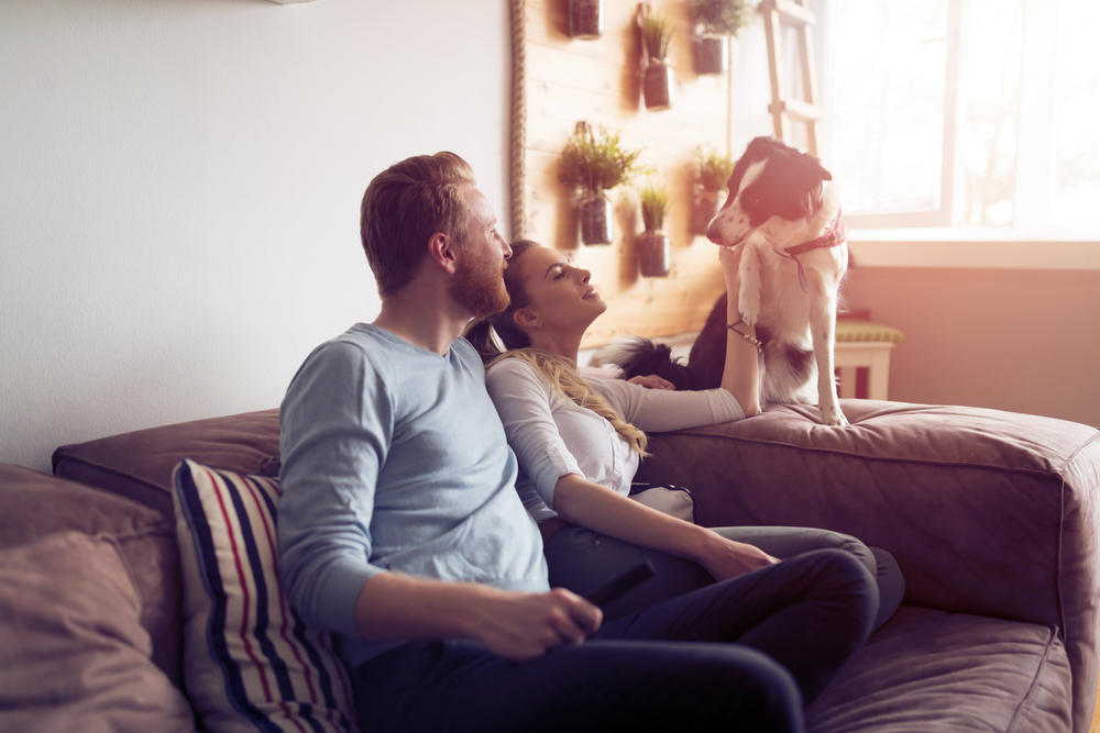 Beautiful,Couple,Relaxing,At,Home,And,Loving,Their,Pet